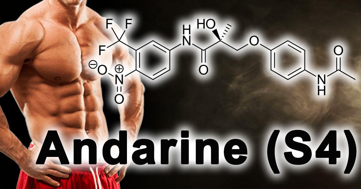 Кардарин: «SARM», который плавит жировые клетки?