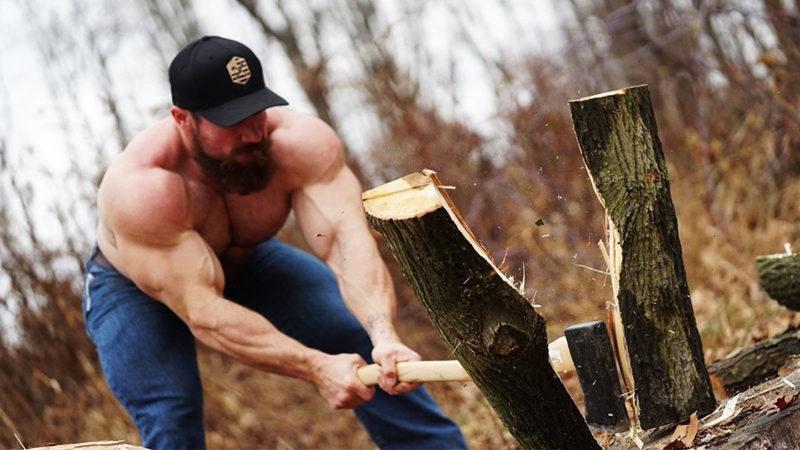 Исследование: повышает ли тестостерон древесную крошку ?!