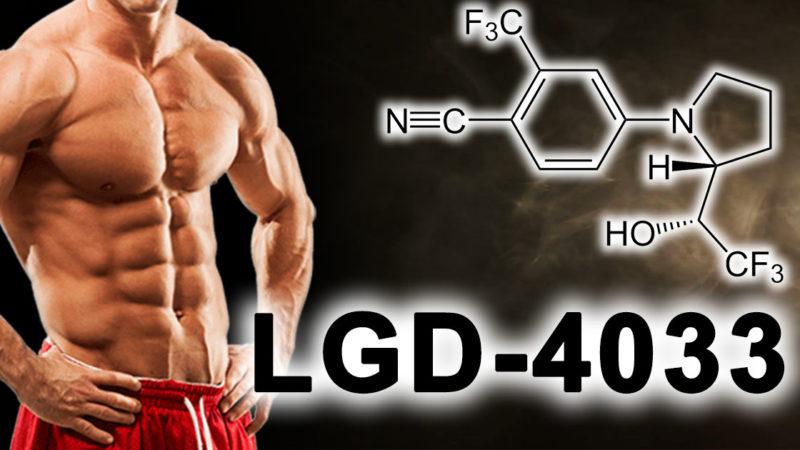 LGD-4033: SARM, который просто называется «Анаболик»!