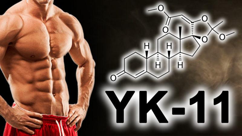 YK-11: «САРМ», который должен ингибировать миостатин?